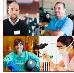 job diversity