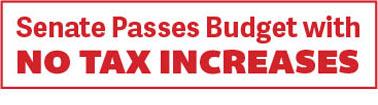 Senate Passes Budget with No Tax Increases