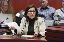 Photo of Senator Slossberg testifying.
