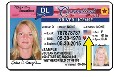 CT veterans' ID