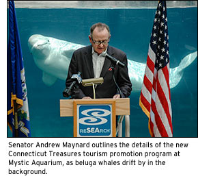 Senator Andrew Maynard outlines the details of the new Connecticut Treasures tourism promotion program at Mystic Aquarium, as beluga whales drift by in the background.