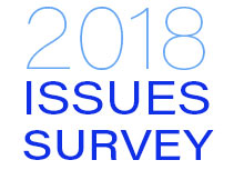 issue survey